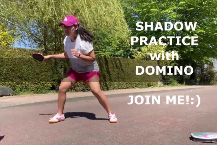 Schattentraining mit Thanh (Teil 2)